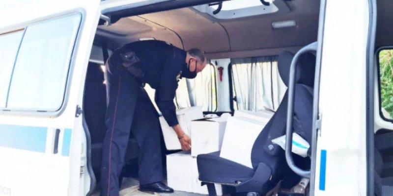 В Пскове полицейские изъяли из незаконного оборота около тысячи литров алкоголя