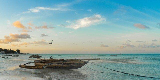 Экзотический туризм: путешествие на остров Занзибар