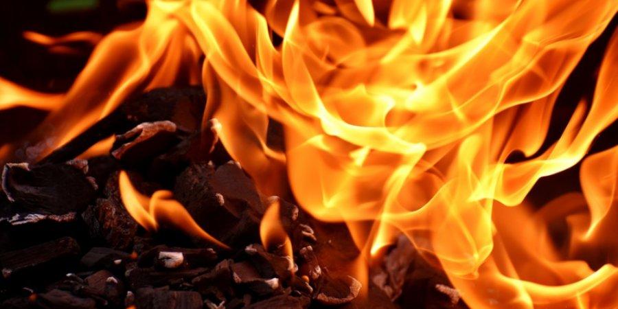 С начала года в Псковской области произошло 75 лесных пожаров