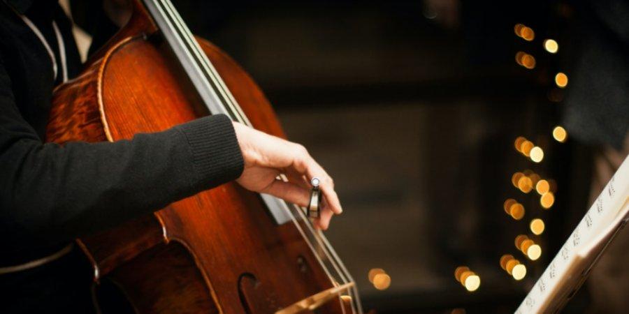 Псковичей приглашают на концерт виолончельной музыки