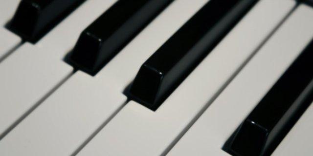 В детскую музыкальную школу № 2 в Пскове поступили новые инструменты