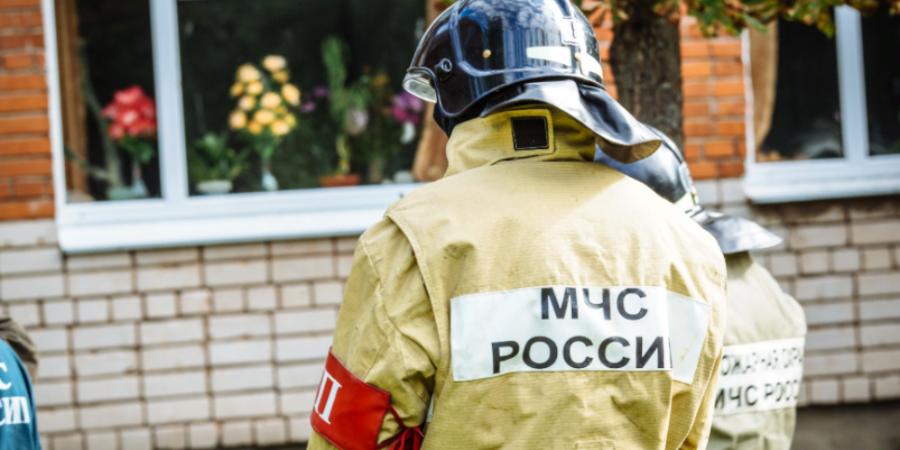 В Невельском районе нашли гранату, а в Великолукском - мину