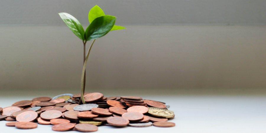 Дополнительную финансовую поддержку региональному бизнесу окажет Правительство