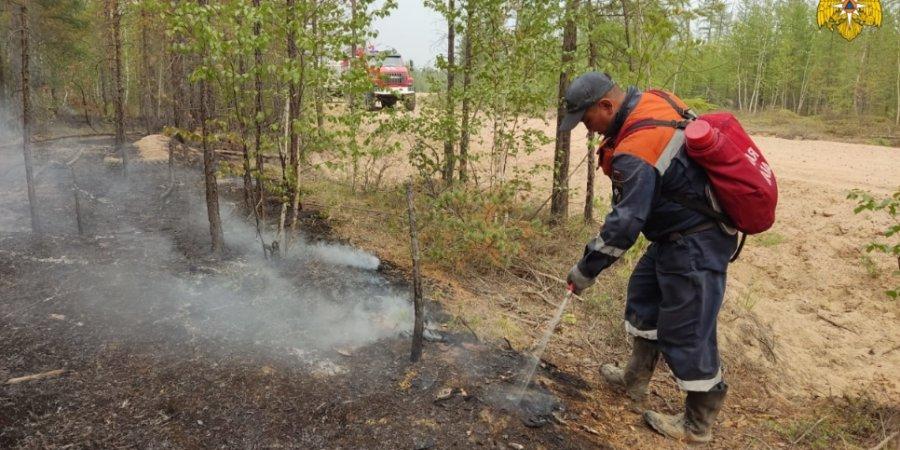 Увеличено количество пожарных на тушении лесов в Якутии