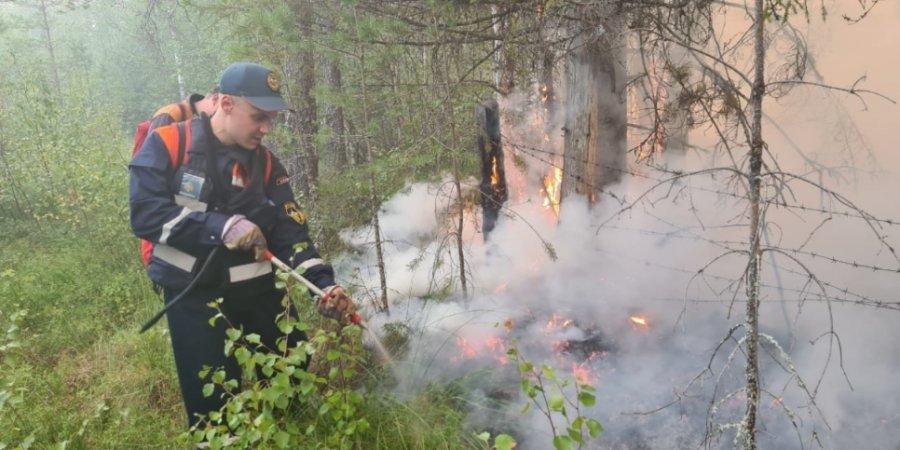 Пожарные тушат леса в Карелии