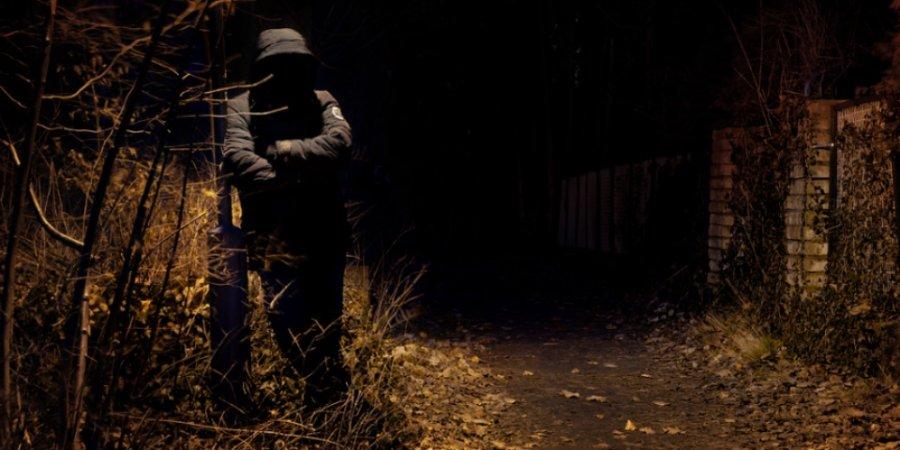 Трое грабителей напали на жителя Новосокольнического района