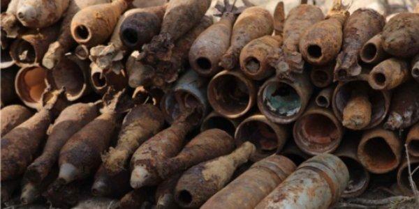 Великолукские спасатели обезвредили в Себежском районе 22 артиллерийских снаряда