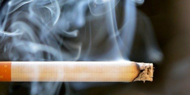 На псковской таможне нашли более 1200 пачек спрятанных сигарет