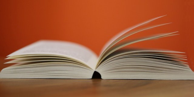 В Пскове пройдет отборочный тур Чемпионата мира по чтению вслух